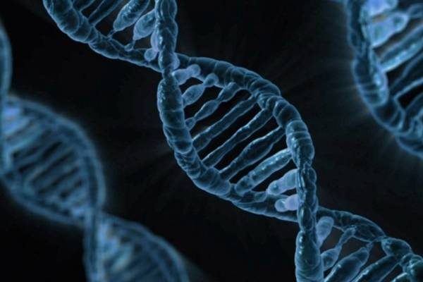 DNA: Biology's Genetic Code