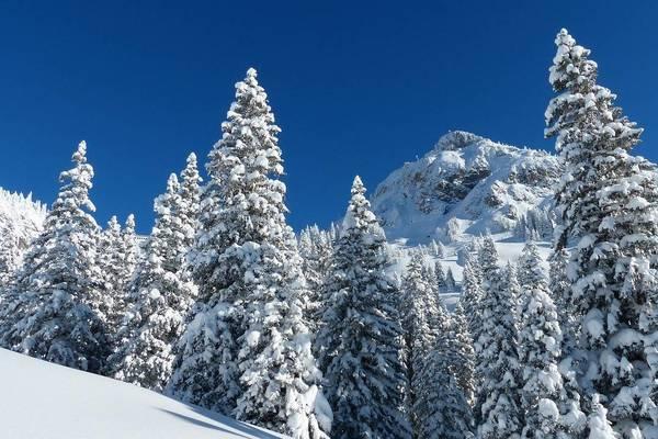 Schneeschuhwandern: Tipps und Tricks