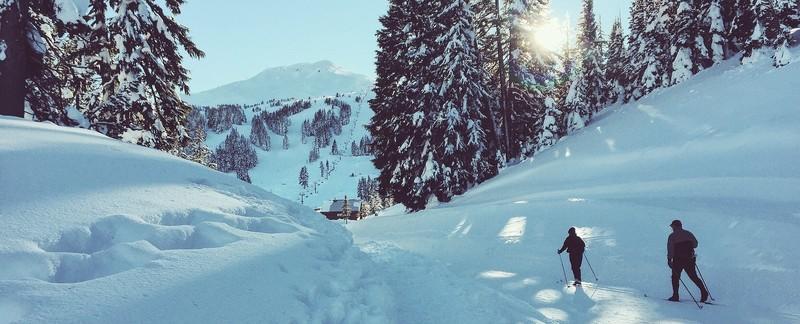 Kann man Skifahren online lernen? Videokurse zu 6 Wintersportarten